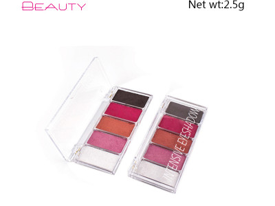 Private label intensive eyeshadow palette 5 colors ES0381