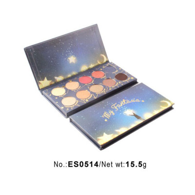 10 colors make your own eyeshadow palette with picture ES0514
