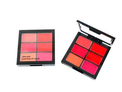 Custom Lip gloss LG0272
