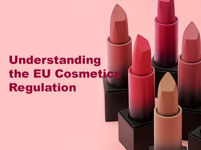 Understanding the EU Cosmetics Regulation